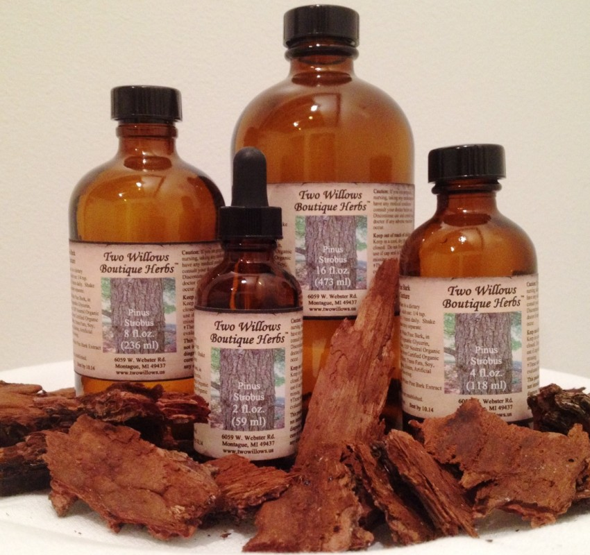 Organic White Pine Bark Extract Tincture